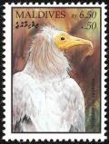 Colnect-1631-874-Egyptian-Vulture-Neophron-percnopterus.jpg