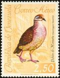 Colnect-2287-726-Lined-Quail-dove-Zentrygon-linearis.jpg