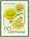 Colnect-1627-157-Lemon-chrysanthemum.jpg