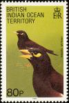 Colnect-1553-526-Common-Mynah-Acridotheres-tristis.jpg