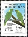 Colnect-4260-461-Yellow-naped-Amazon-Amazona-auropalliata-ssp-caribea.jpg
