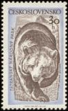 Colnect-448-562-Brown-Bear-Ursus-arctos.jpg