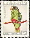 Colnect-1565-479-Hispaniolan-Amazon-Amazona-ventralis.jpg