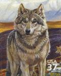 Colnect-202-145-Wolf-Canis-lupus.jpg