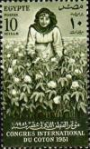 Colnect-1281-979-International-Cotton-Congress---Woman-Picking-Cotton.jpg