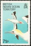 Colnect-1553-525-Red-footed-Booby-Sula-sula.jpg