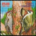 Colnect-5344-326-Green-Woodpecker-Picus-viridis.jpg