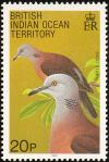 Colnect-1553-517-Turtle-Dove-Streptopelia-turtur.jpg