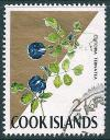 STS-Cook-Islands-2-300dpi.jpg-crop-374x480at1071-2163.jpg
