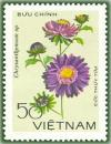 Colnect-1627-156-Purple-chrysanthemum.jpg