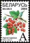 Colnect-1058-280-Red-currants---Ribes-rubrum-.jpg