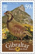 Colnect-2167-596-Barbary-Partridge-Alectoris-barbara-.jpg