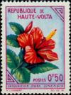 Colnect-507-615-Hibiscus-rosa-sinensis.jpg