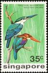 Colnect-1623-938-White-breasted-Kingfisher-Halcyon-smyrnensis-Collared-Kin.jpg