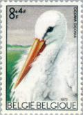 Colnect-185-179-White-Stork-Ciconia-ciconia.jpg