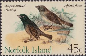 Colnect-1947-705-Norfolk-Starling-Aplonis-fusca-.jpg