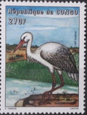 Colnect-4544-629-White-Stork-Ciconia-ciconia.jpg