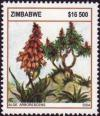 Colnect-5405-074-Aloes---Aloe-arborescens.jpg