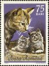 Colnect-5043-391-Cat-and-two-kittens.jpg