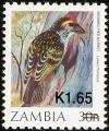 Colnect-864-840-Miombo-Pied-Barbet-Tricholaema-frontata-overprint.jpg