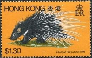 Colnect-1256-042-Chinese-Porcupine-Acanthion-subcristata.jpg