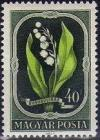 Colnect-597-546-Lily-of-the-Valley-Convallaria-majalis.jpg