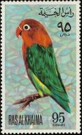 Colnect-1656-980-Lilian-s-Lovebird%C2%A0Agapornis-lilianae.jpg