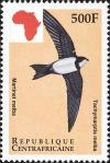 Colnect-4383-427-Alpine-Swift-Tachymarptis-melba.jpg