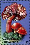 Colnect-3058-936-Hygrocybe-punicea.jpg