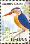 Colnect-3807-391-African-Pygmy-Kingfisher-Ispidina-picta.jpg