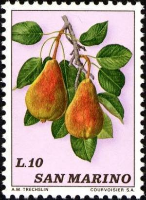 Colnect-1685-852-Pears.jpg