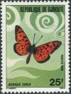 Colnect-2799-965-Nymphalid-Butterfly-Acraea-chilo-.jpg