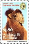 Colnect-4112-683-Bactrian-camel.jpg
