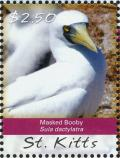 Colnect-3742-845-Masked-Booby-Sula-dactylatra.jpg
