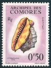 STS-Comoros-1-300dpi.jpg-crop-357x476at233-1700.jpg