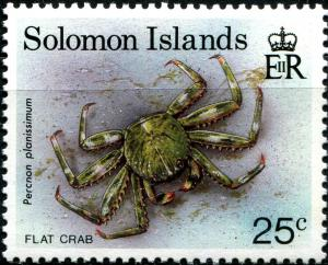 Colnect-2309-747-Flat-Rock-Crab-Percnon-planissimus.jpg