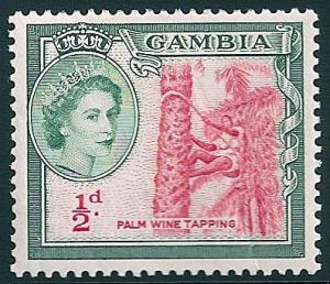 STS-Gambia-3-300dpi.jpg-crop-397x342at490-270.jpg