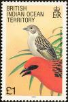 Colnect-1553-527-Red-Fody-Foudia-madagascariensis.jpg