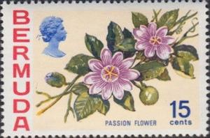Colnect-2073-054-Passion-flower.jpg